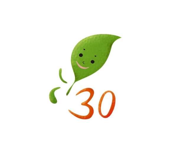 设计理念: 庆祝30周年,就是路跑,用树叶健康清新的形象化作小人跑步的
